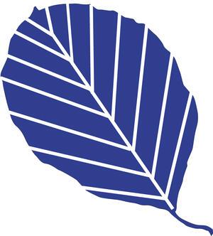 Buchenblatt blau