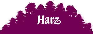 Externer Link: http://www.harzinfo.de/urlaubsorte/alle-urlaubsorte-im-harz/seesen.html